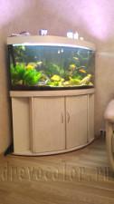 Покраска тумбы аквариума